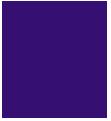 Tamás Pince Logo